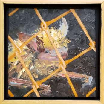 Pam Jackson - Caged bat 2